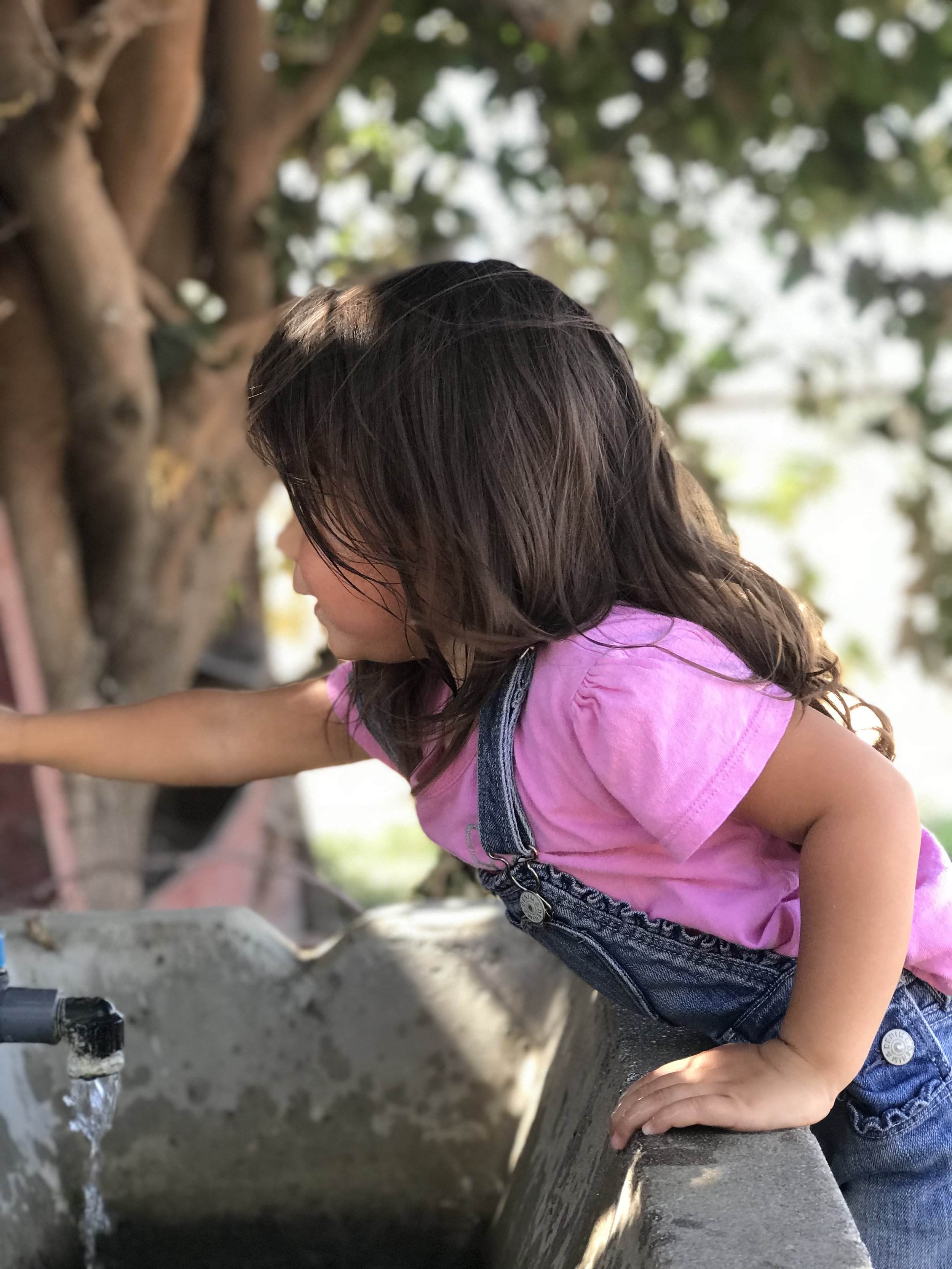 FARM TRIP WITH HOMESCHOOL KIDS.jpg