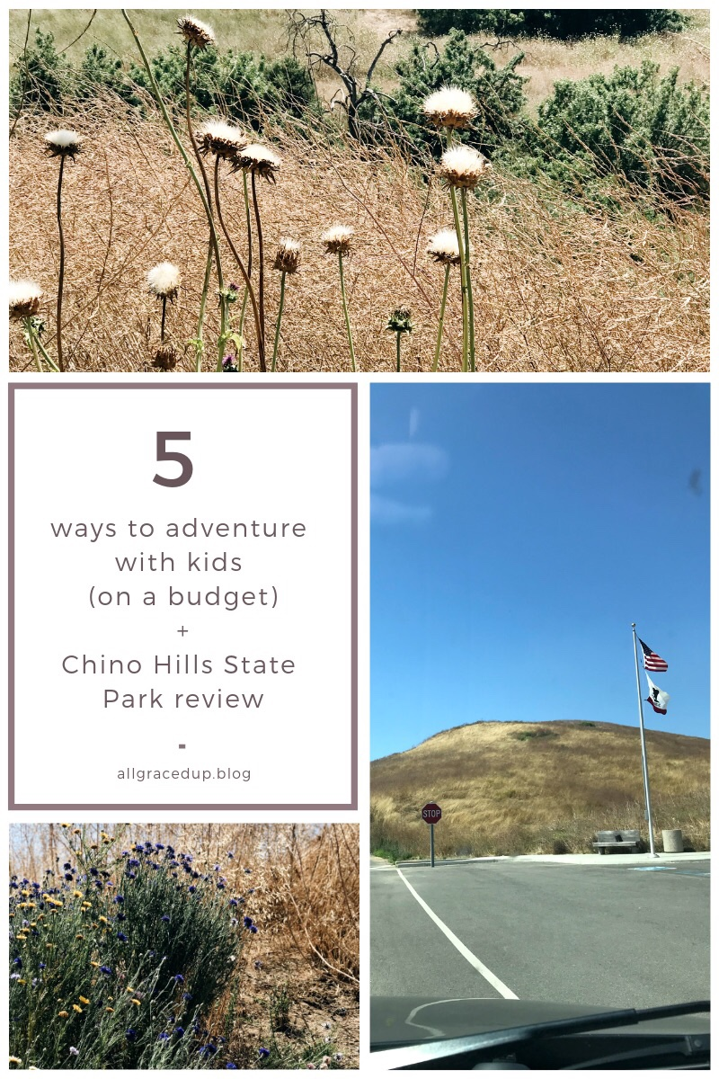 Chino Hills State park. Admission to the park was $5 & you were free to roam + discover whatever it had to offer. Great place to adventure free of the internet monster. Full of hiking trails, lizards, bees + simple fun!