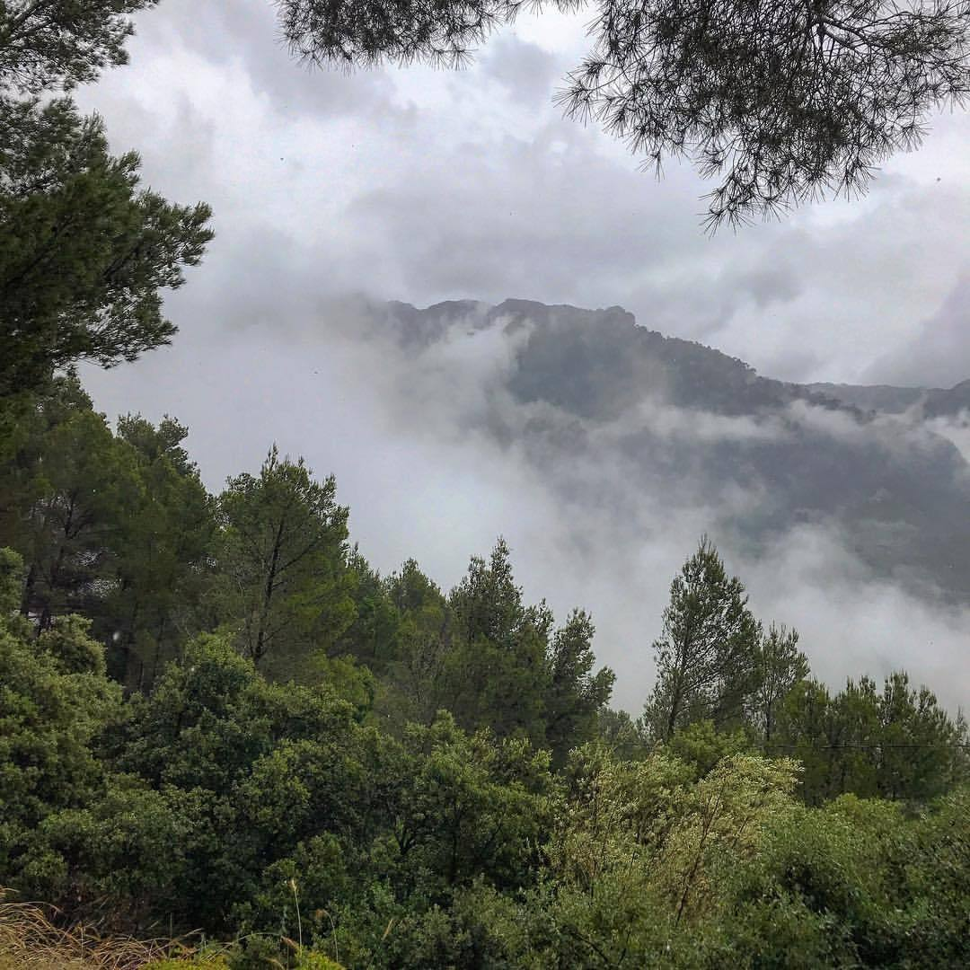 Fog rising over the Tramuntana mountains, another breathtaking (aka hair-raising ride!) UNESCO World Heritage Site.  #spain #mallorca #tramuntana #unesco  (at Fornalutx, Islas Baleares, Spain)
