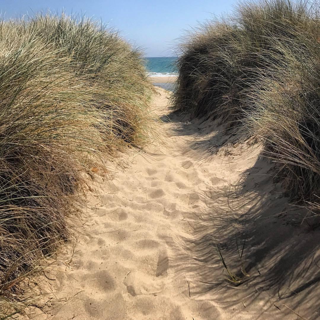 The slow reveal.  -  #california #beach #westmarin #ilovecalifornia  (at Point Reyes National Seashore)