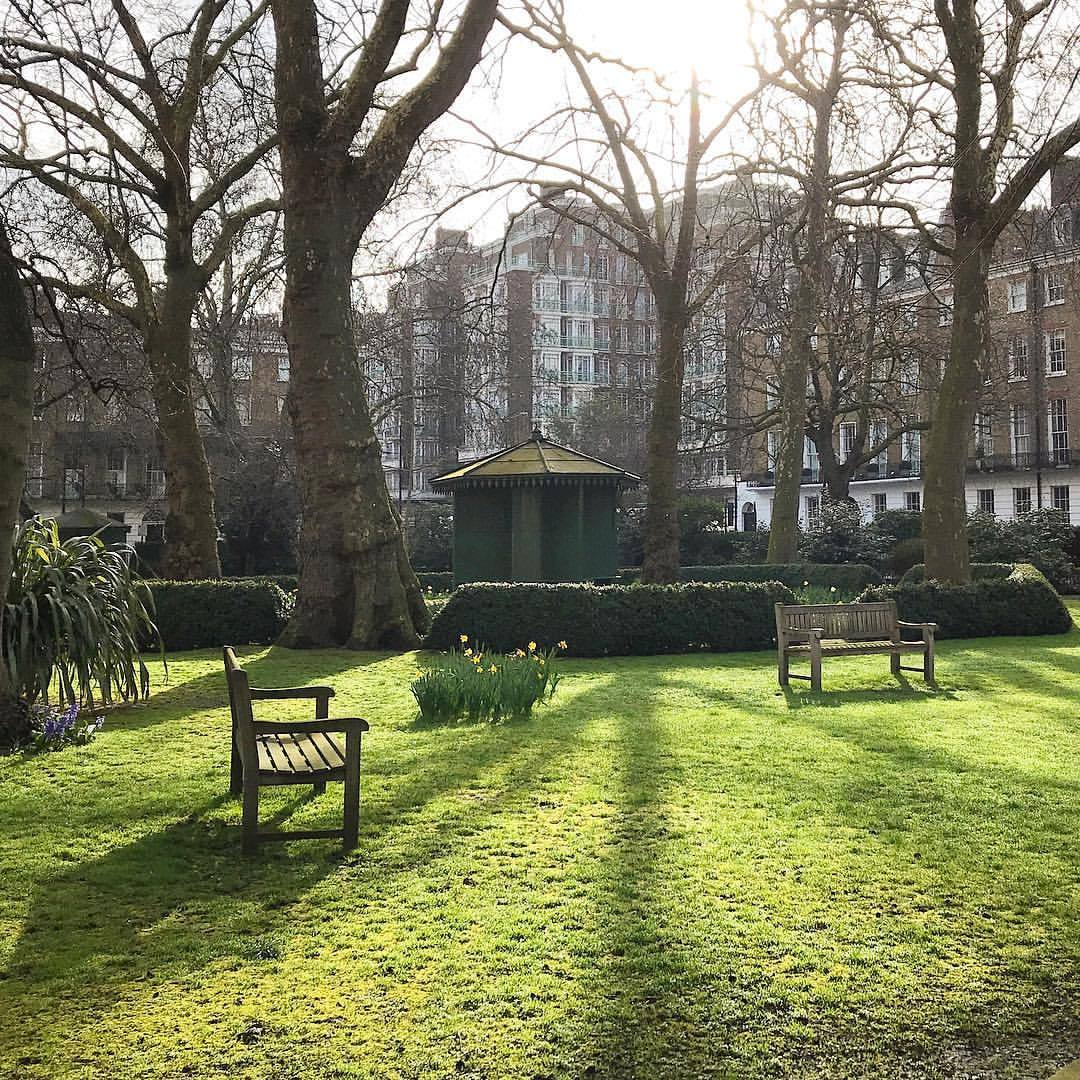 Respite in the center of London.    #unitedkingdom #england #london #park #greenspace #tokersparadise  (at Marylebone London)