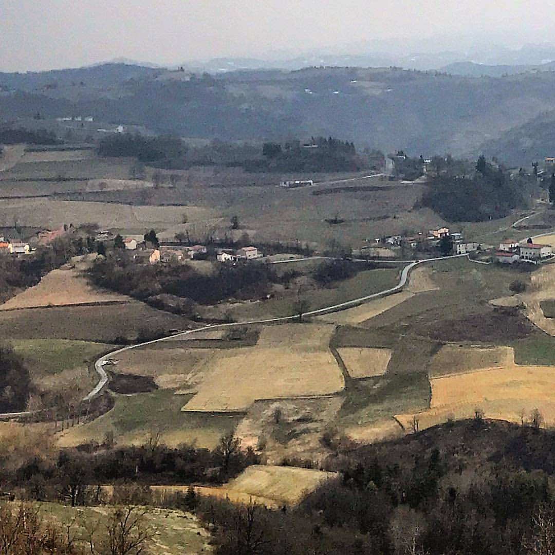 Piedmontese patchwork.  -  #italy #piedmont #langhe #italyroadtrip  (at Magliano Alpi)