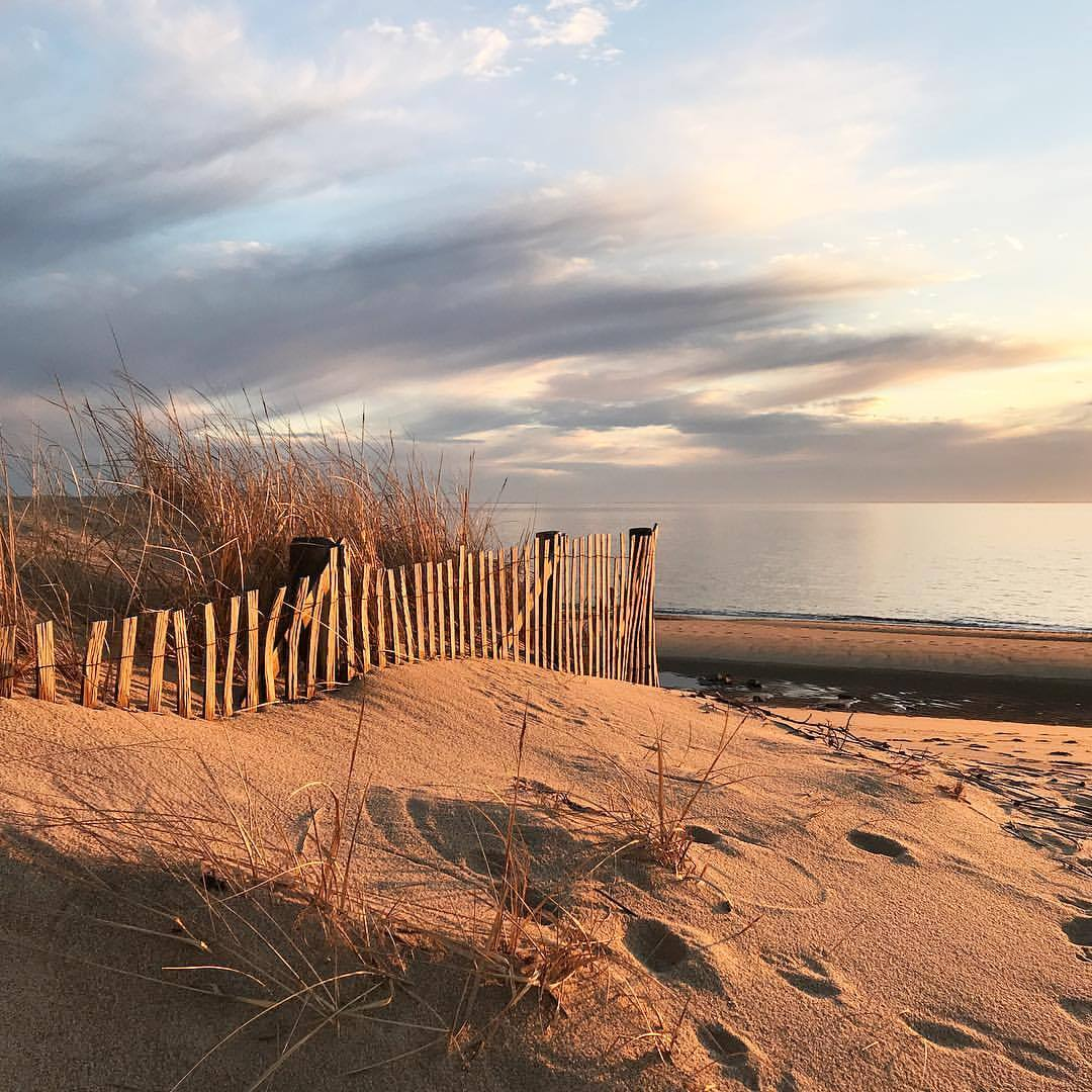 The dunes appreciating the sunset.  -  #massachusetts #capecod #provincetown #offseason  (at Provincetown, Massachusetts)
