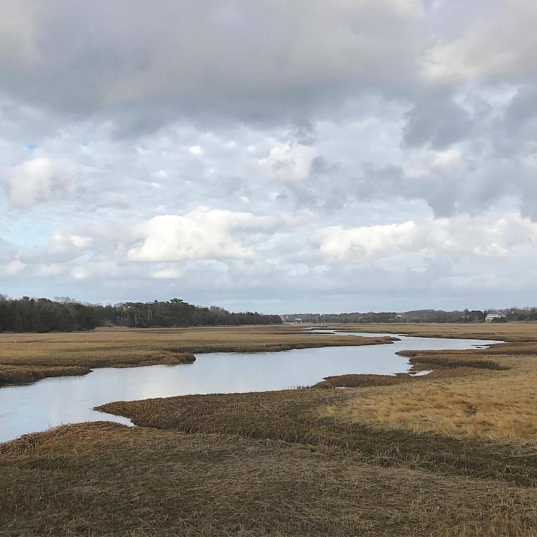 Marshes.  -  #massachusetts #capecod #wintermedicine  (at Dennis, Massachusetts)