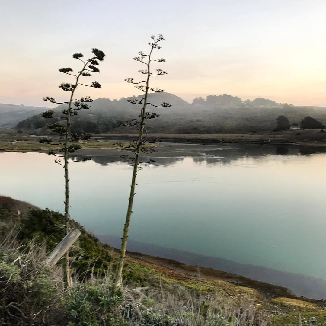 Foggy sunrise at the mouth of the Russian River.  -  #california #ilovecalifornia #sonoma #russianriver  (at Jenner, California)