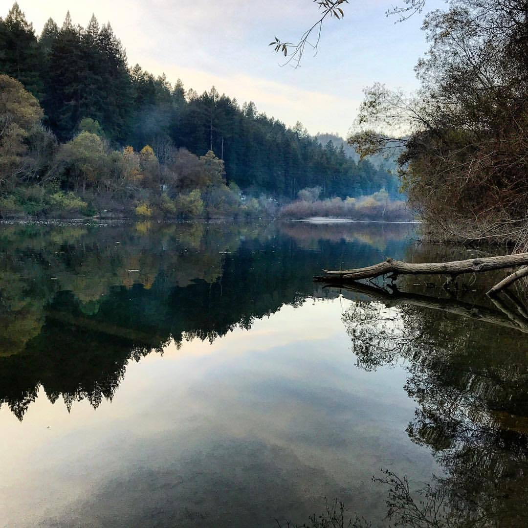The Russian River.  -  #california #ilovecalifornia #nature #peaceandquiet  (at Guerneville, California)