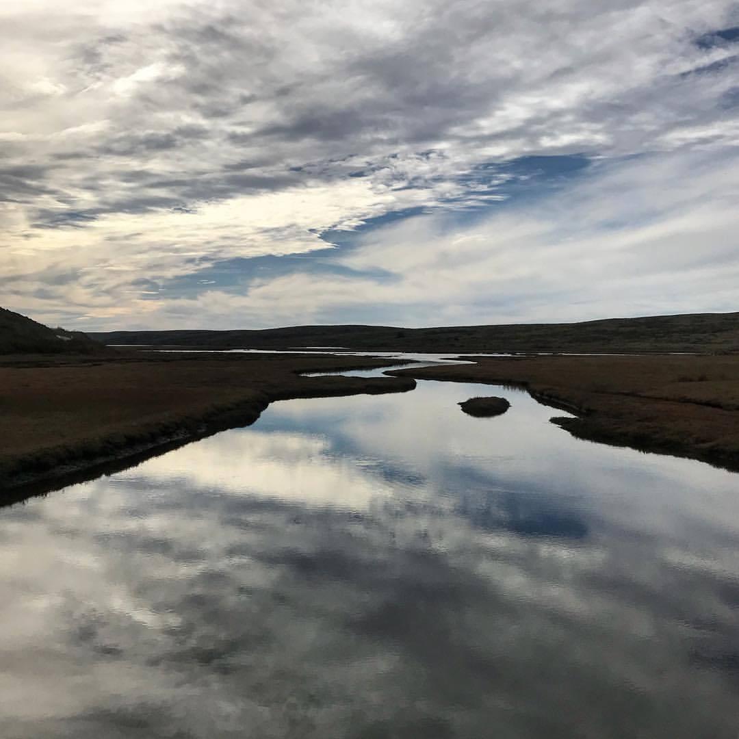 Winter light.  -  #california #ilovecalifornia #westmarin #marsh  (at Point Reyes National Seashore)