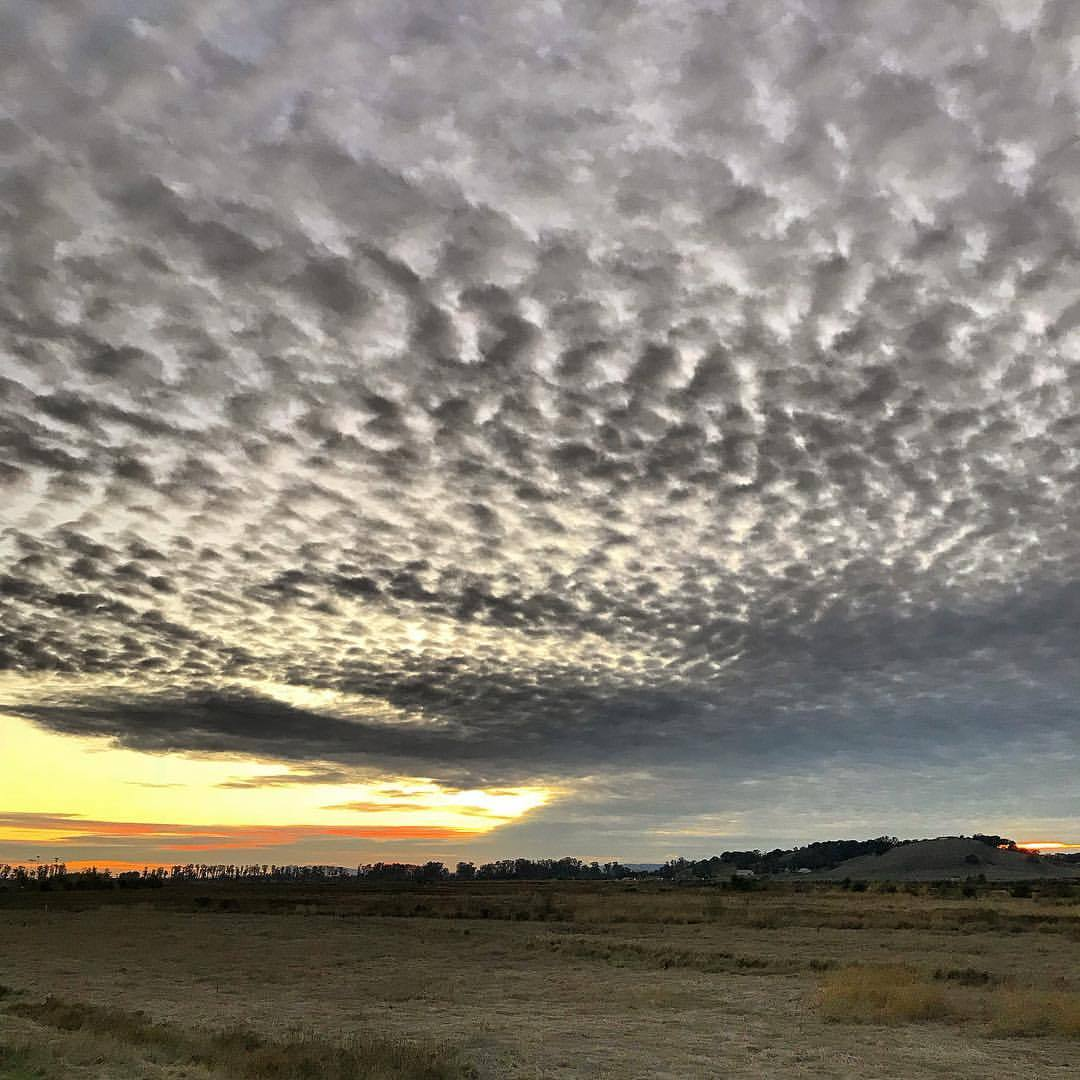 Evening skies predicting rain.  -  #california #ilovecalifornia #napa #eveningwalk  (at Napa River Trail)