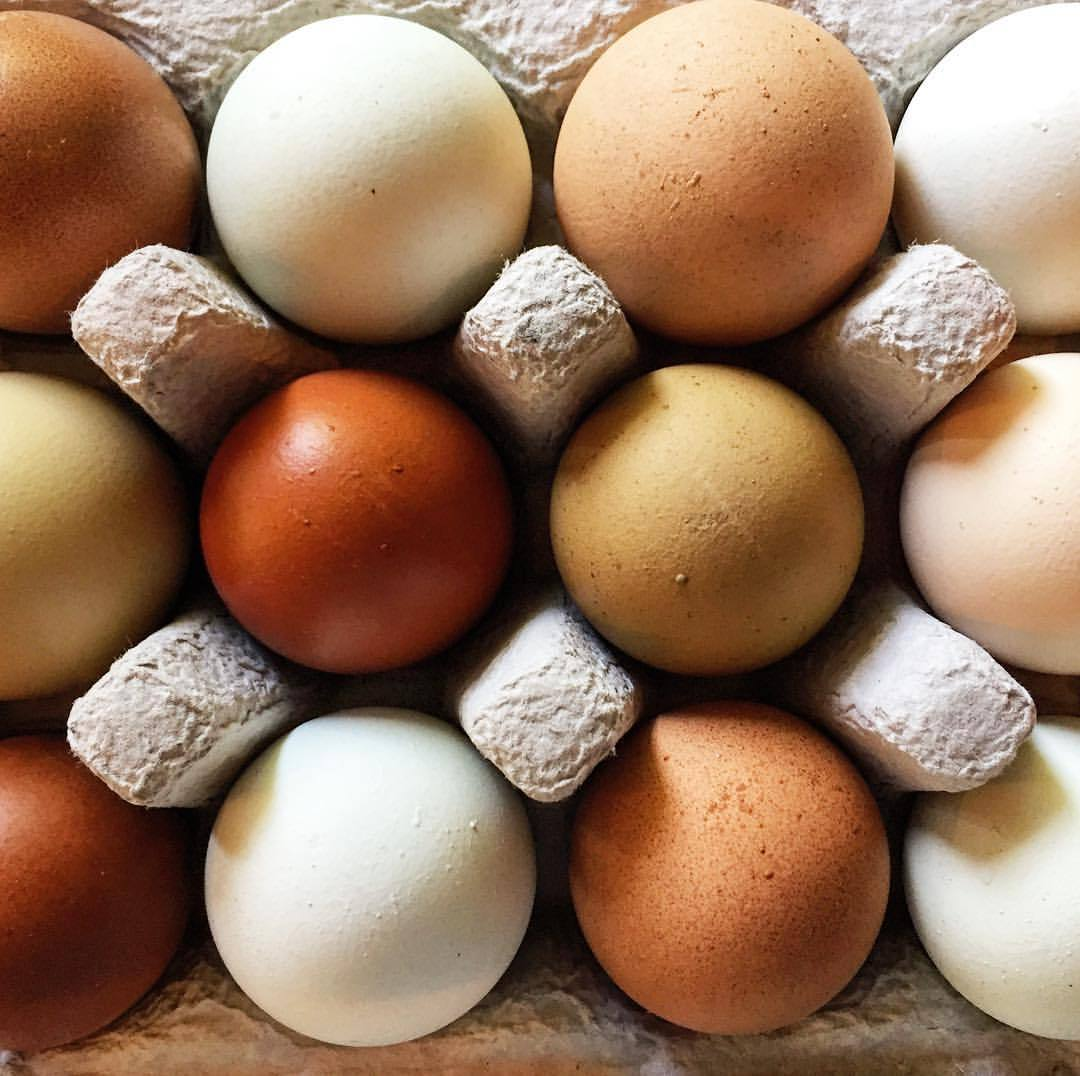 #edibleart  (at At Home in Napa)