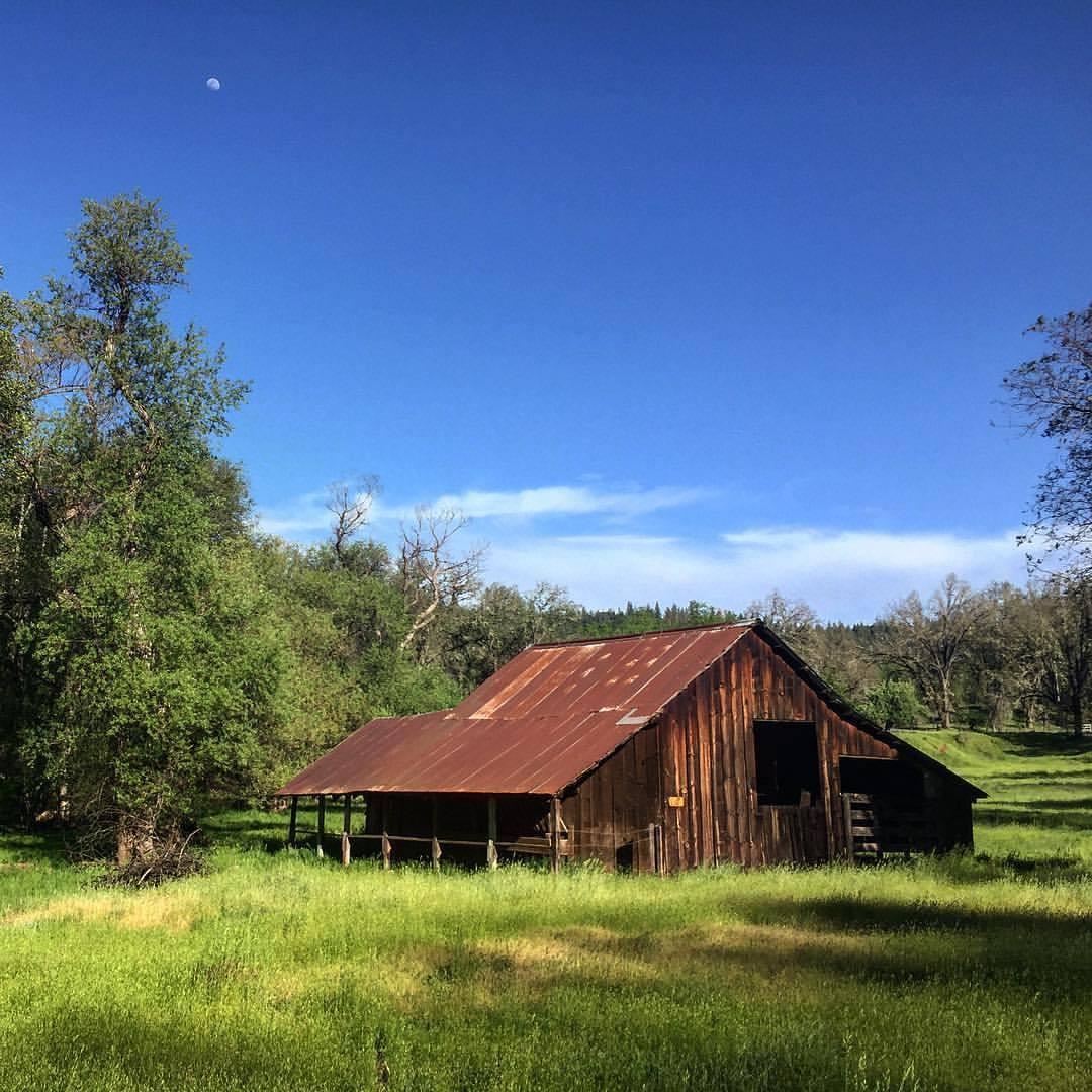Under a waxing moon.  #california #farmlife #spring  (at Volcano, California)