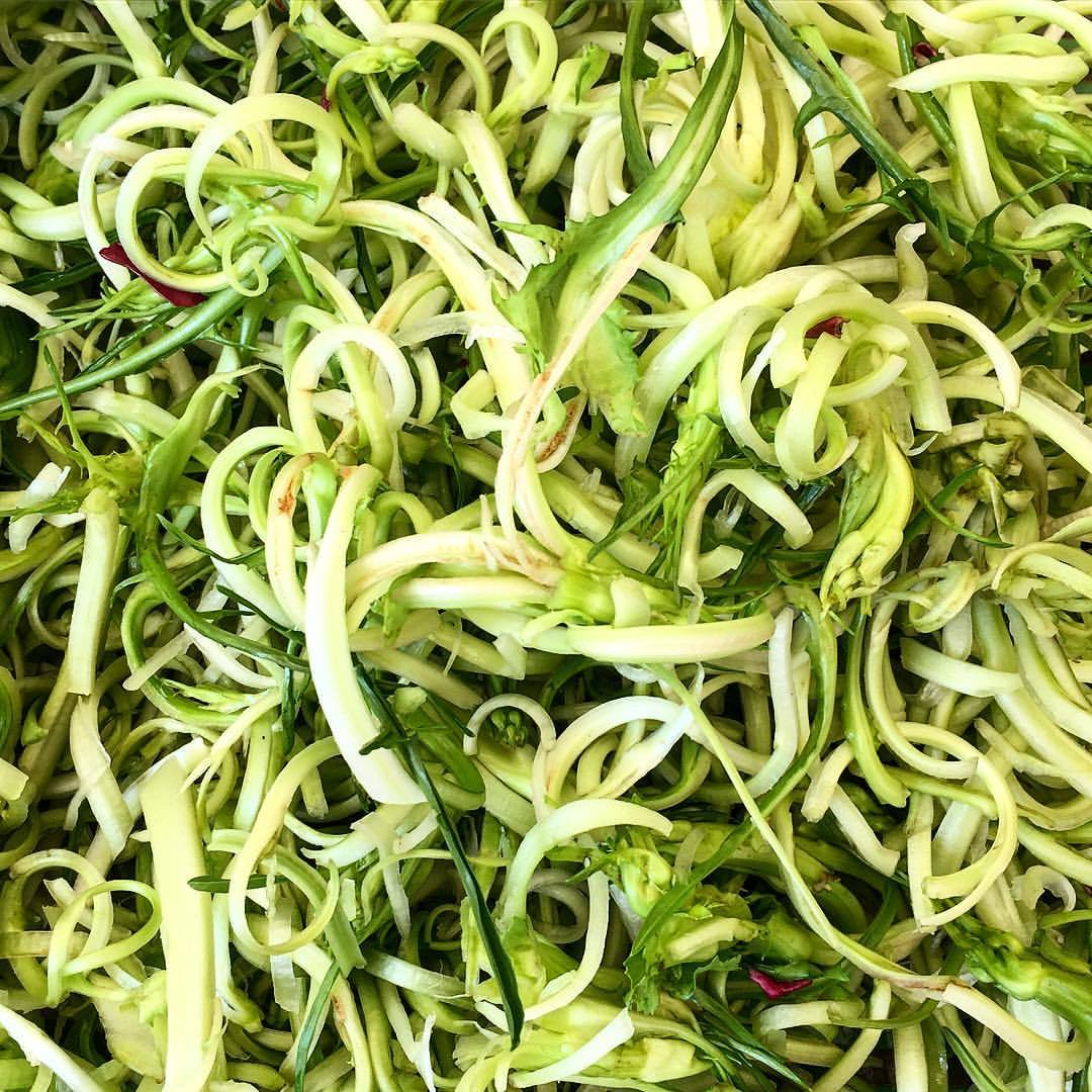 Curly puntarelle.  #italy #rome #food #vegetables #verduras  (at Piazza Campo Di' Fiori)