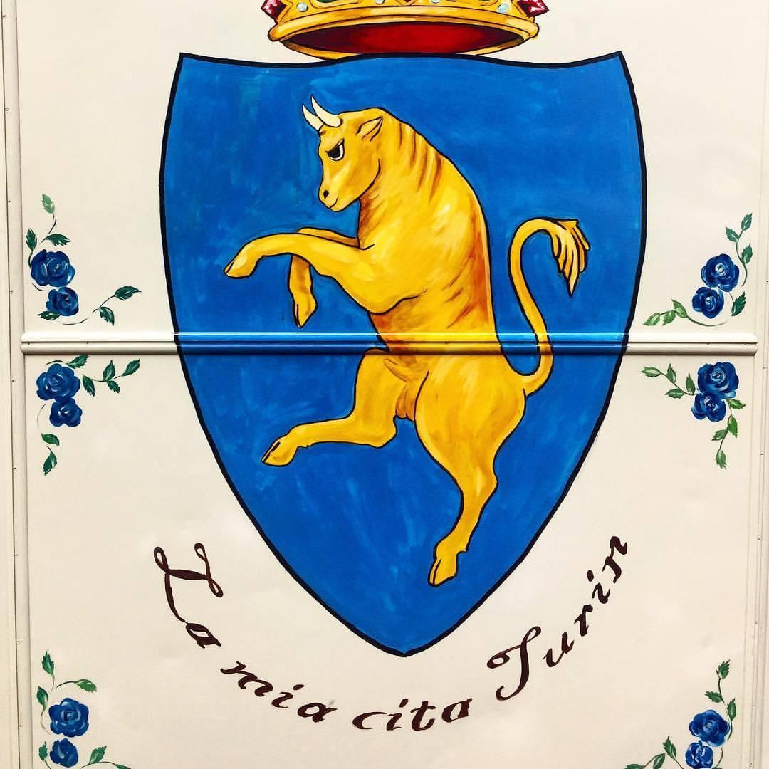 Piedmontese cow (razzo bovina Piemontese) is king.  #italy #torino #manzo #beef  (at Turin, Italy)