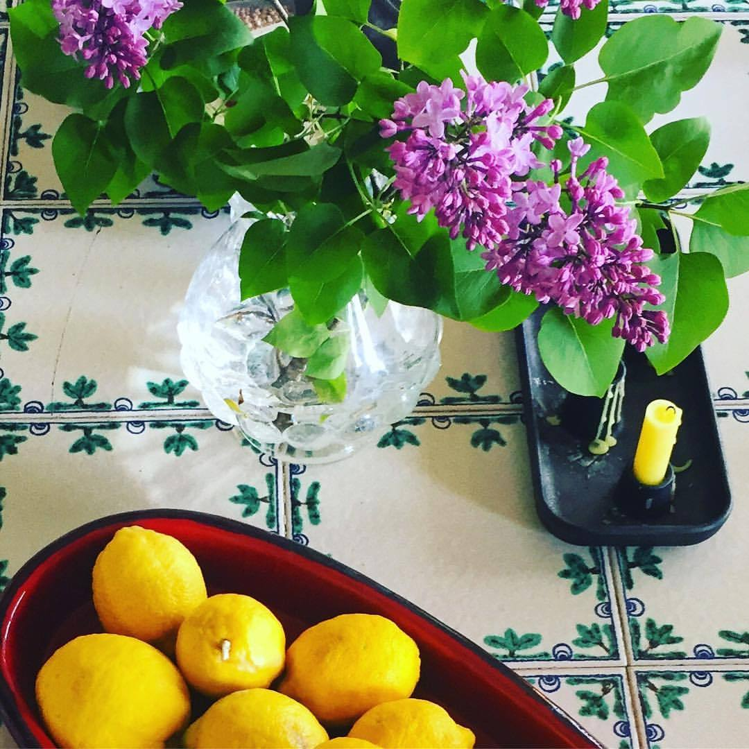 Is it wrong to pinch flowers from the garden of a rented pad?  #italy #piedmont #spring #lilac #couldnthelpmyself  (at Bossolasco)