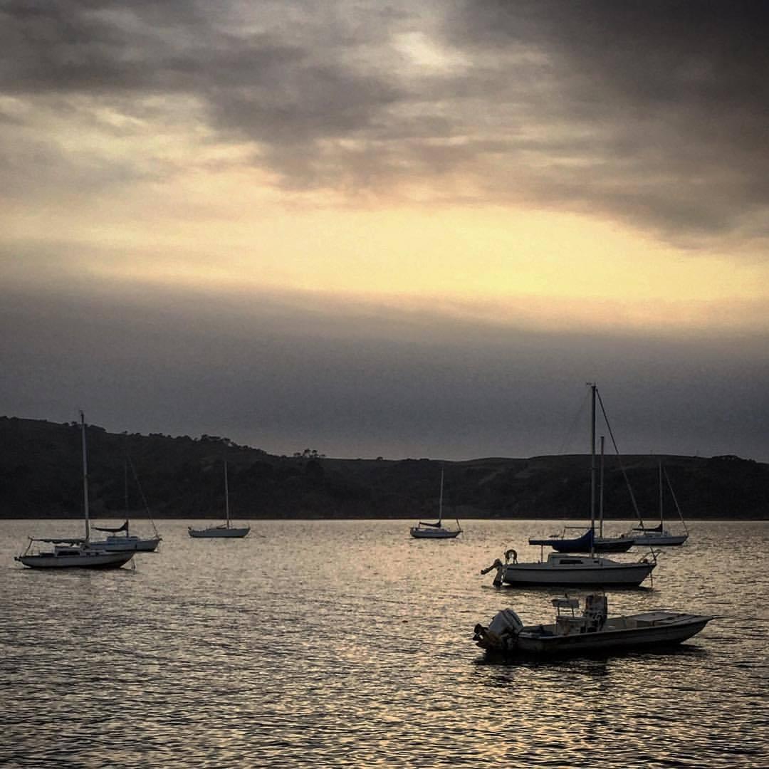 Tomales Bay.  #california #westmarin #winterlight  (at Point Reyes National Seashore)