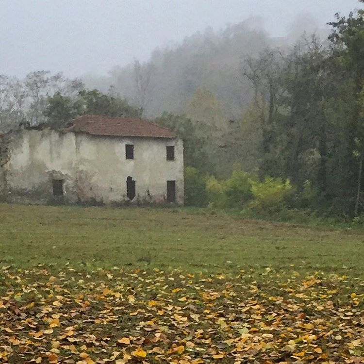 I never tire of church bells  echoing through the valley during late afternoon walks in the fog.  With each strike of the lip,  the clapper issues a reverberation,  a reminder   of the immensity of life,   the nearness of death,  and Nature's indifferent,   non-discriminatory   and eventual reclamation   of the entire circus.  #italy #piedmont #autumn #nature       (at Bossolasco)