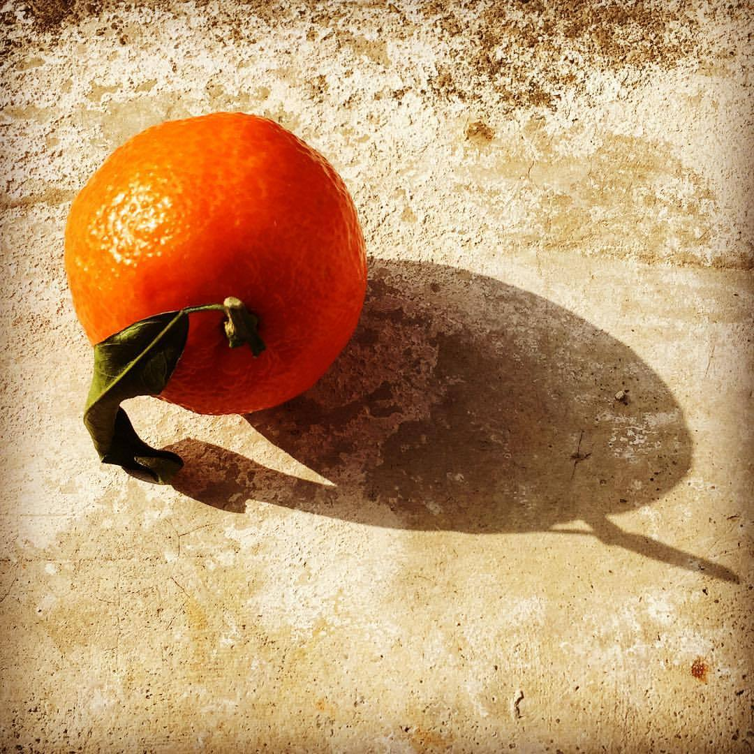Satsuma orange.  #italy #wintercitrus  (at Castello Dogliani)