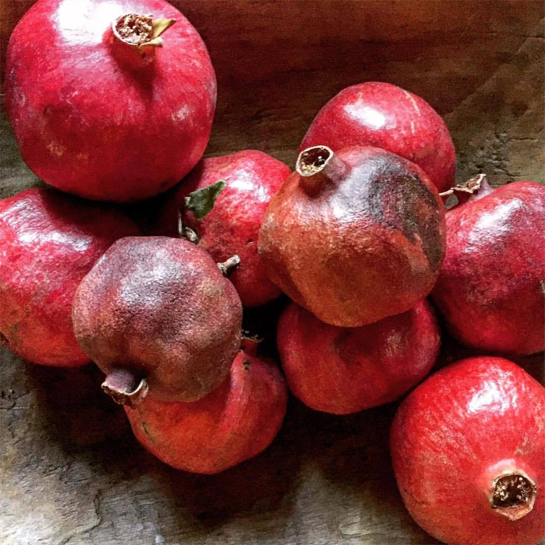 Pomegranates, introduced to California by Spanish settlers in the late 1700s.  #california #fruitsoftheseason  (at At Home in Napa)