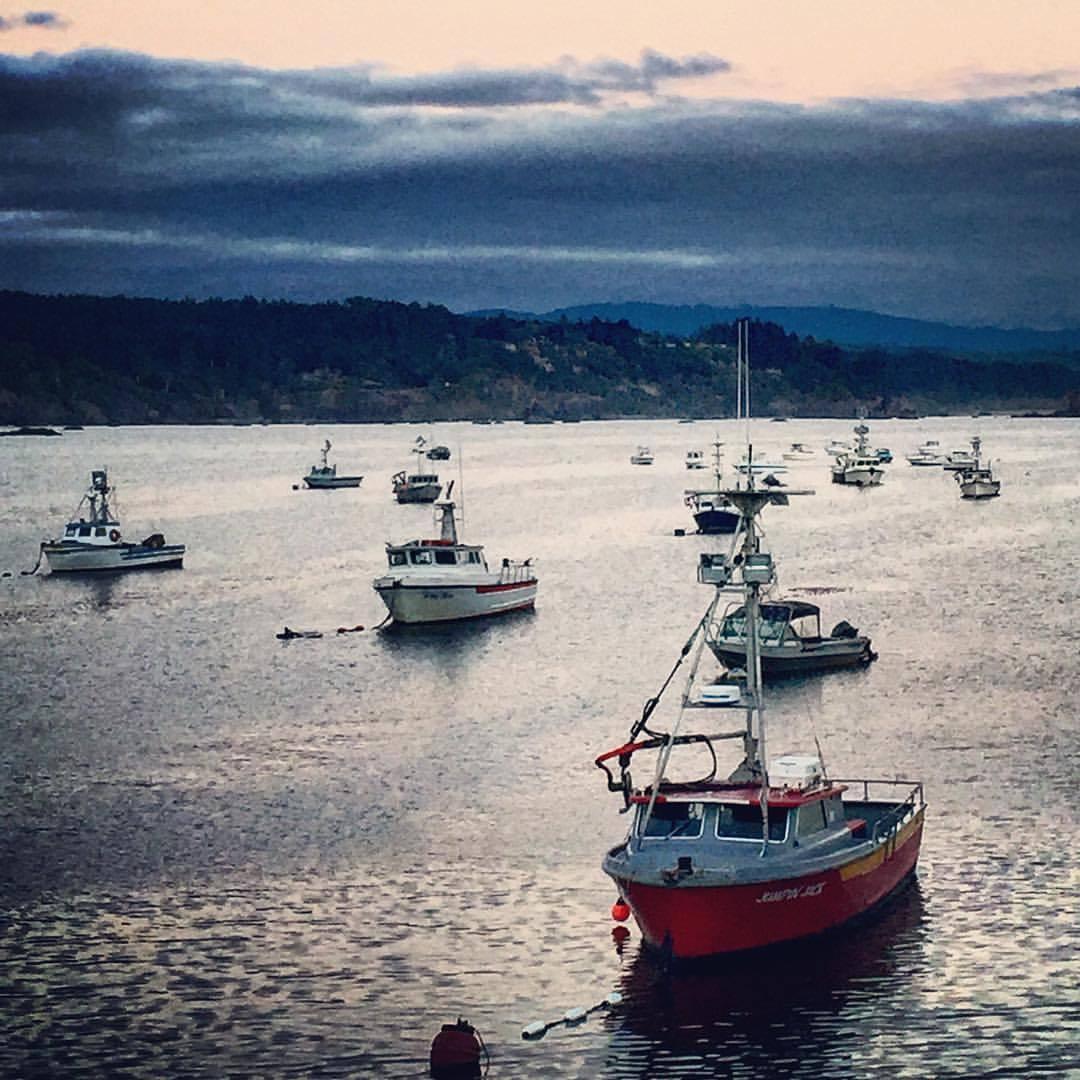 Fishing boats at rest.  #california #humboldt #summerroadtrip  (at Trinidad, California)