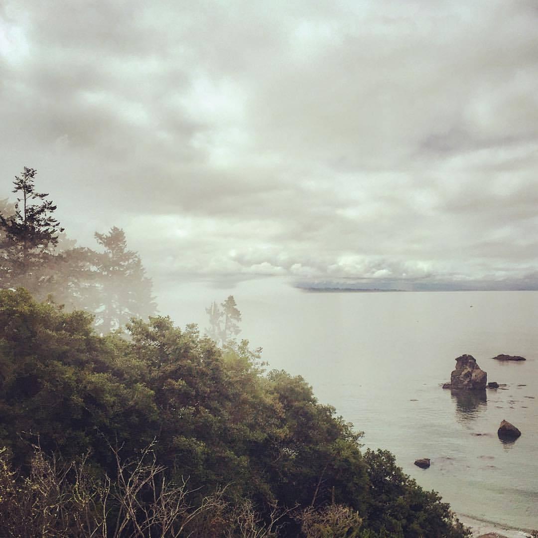 Fog pulling off the harbor.  #california #humboldt #summerroadtrip  (at Trinidad Head, California)