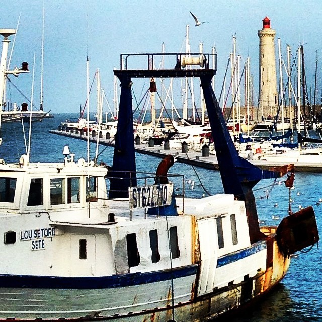 A working French port redolent of fish, fuel and the Mediterranean. (at Port de Sète)