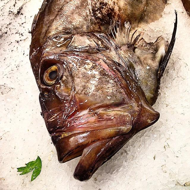 Pescado. (at La Boqueria)