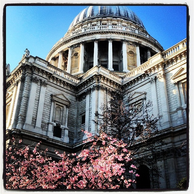 Springtime in London. (at St Paul's Cathedral)