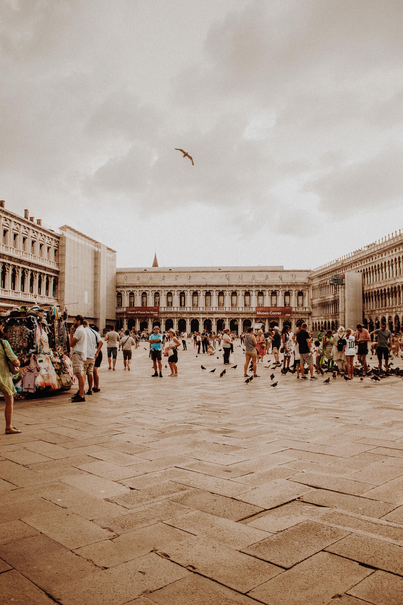 Piazzo San Marco Venice