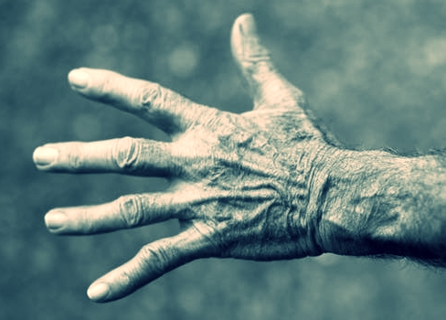 Big Jack's hands, that serve daily inspiration.