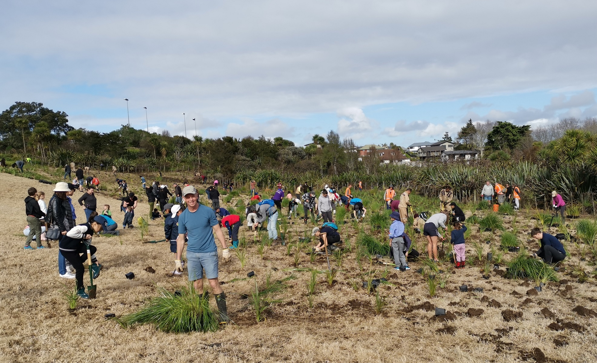 Community planting day at Ōhuiarangi / Pigeon Mountain, July 2019. Credit Tūpuna Maunga Authority.