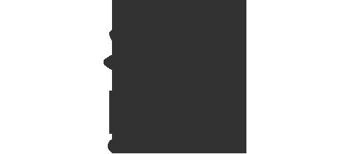 NSWGov_Logo_Grey.png
