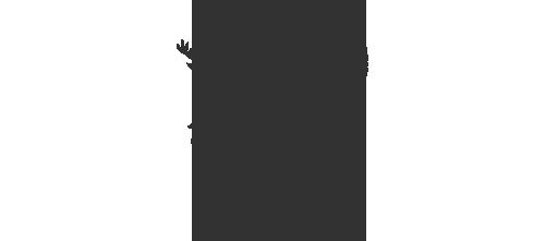 QLDGov_Logo_Grey.png