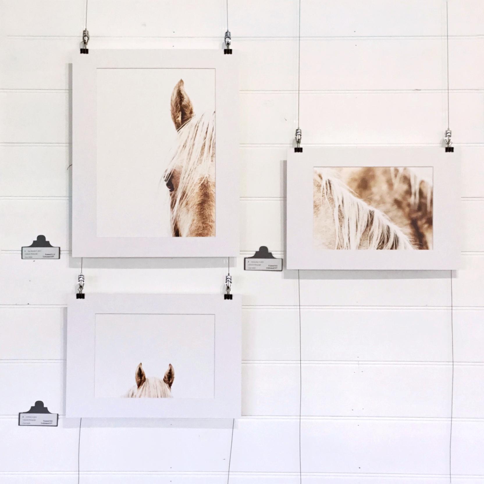 Chloe Smith Photography Exhibition