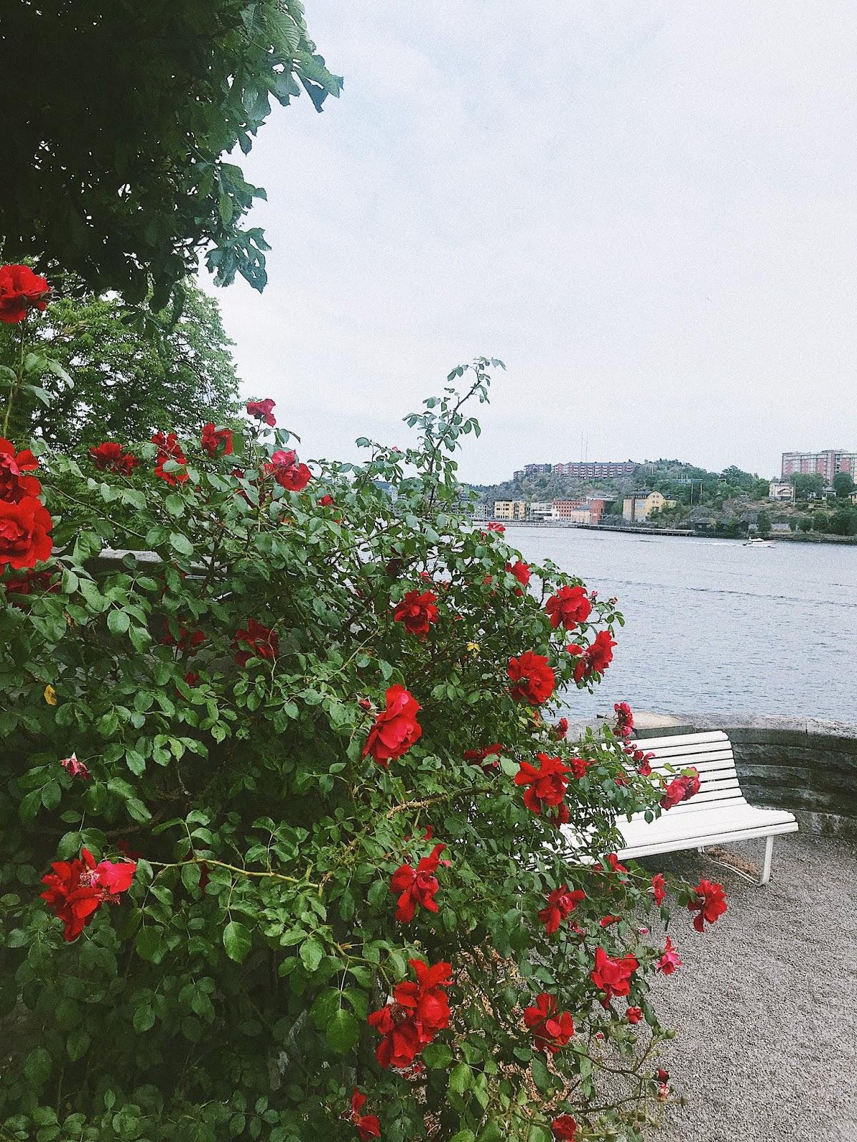Фото 17.06.2018, 15 43 34.jpg