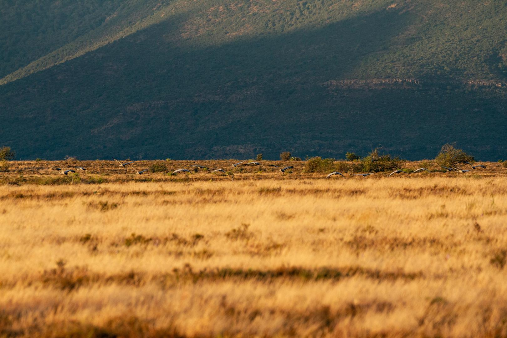 Landschaften43.jpg