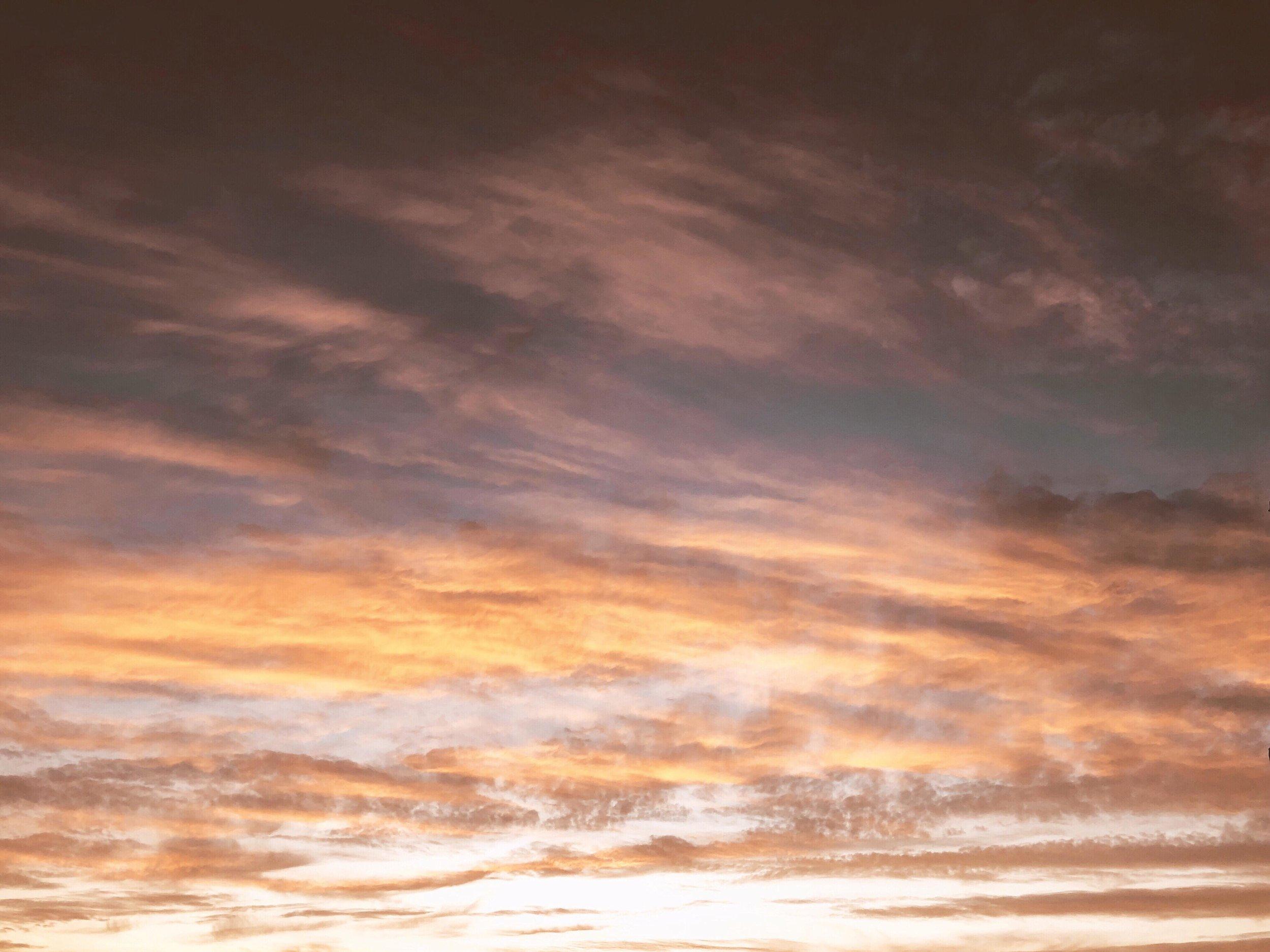 my summer with the sky | Amanda Zampelli