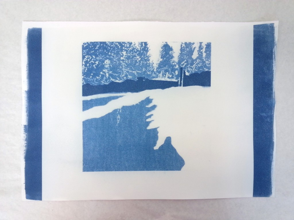 The softer light in this cyanotype is due to its exposure outside on a sunny day in Banff around 2 PM. I wanted to bring Banff's light home somehow.