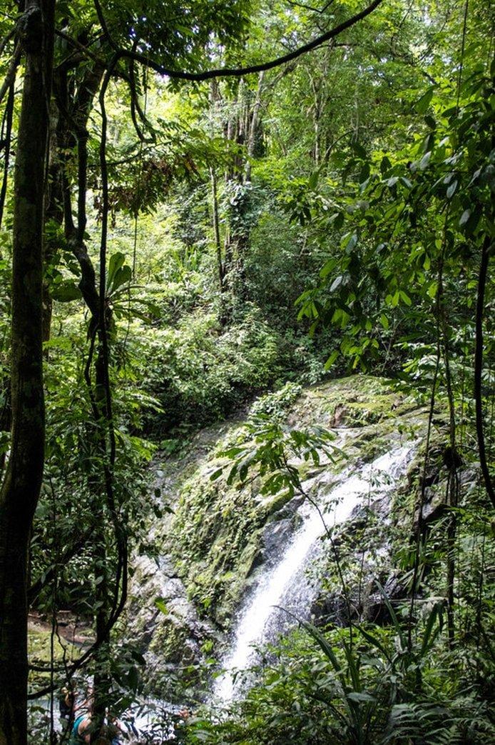 Parque Nacional Manuel Antonio Waterfall