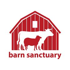 barn sanctuary.jpg