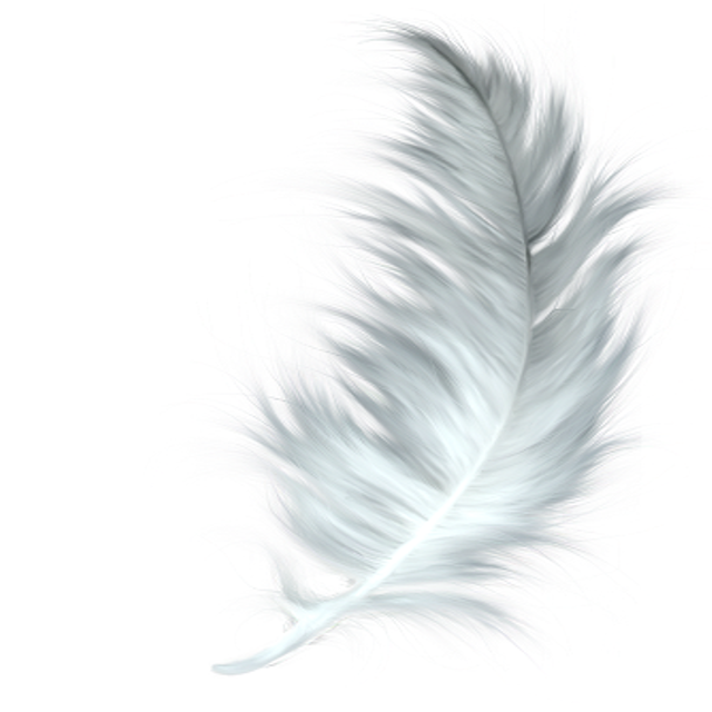 Angels & Feathers -