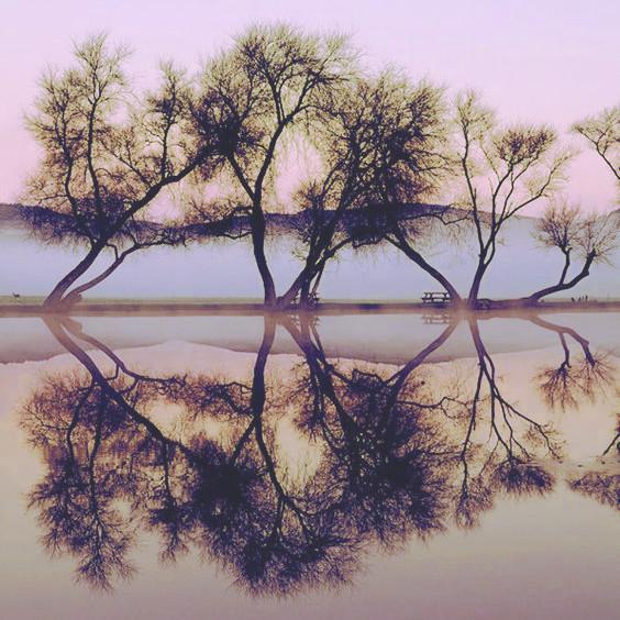 Peace 3 .jpg