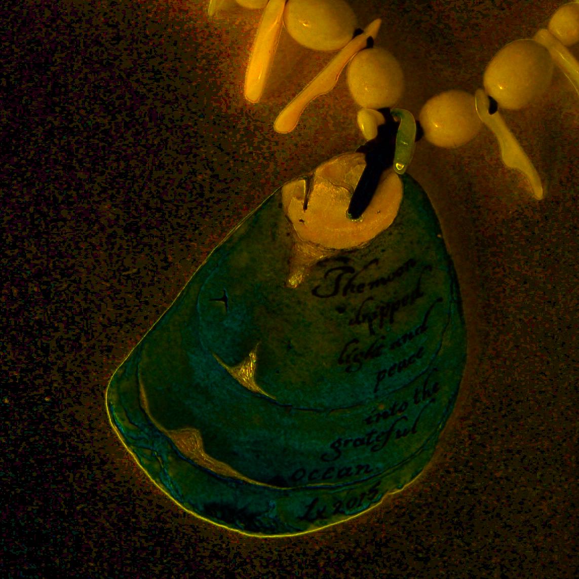 Shell pendant TRANS .png