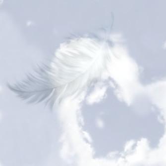 LOVE & ANGELS -