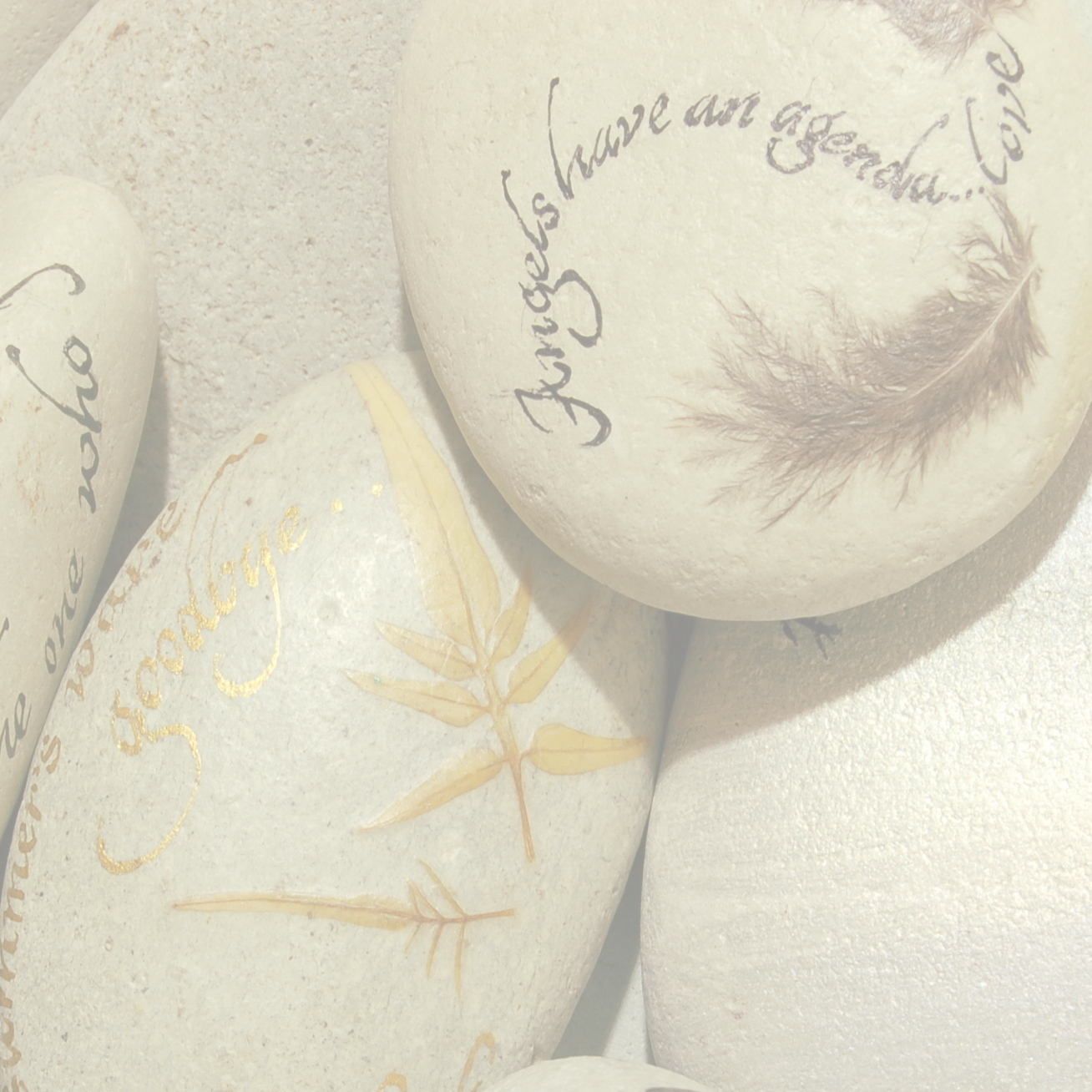Feathers, leaves & Transfers -