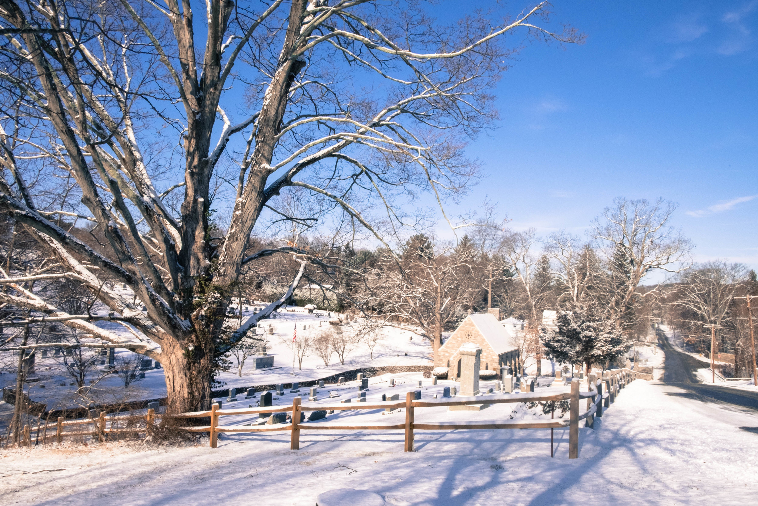 snowday-4.jpg