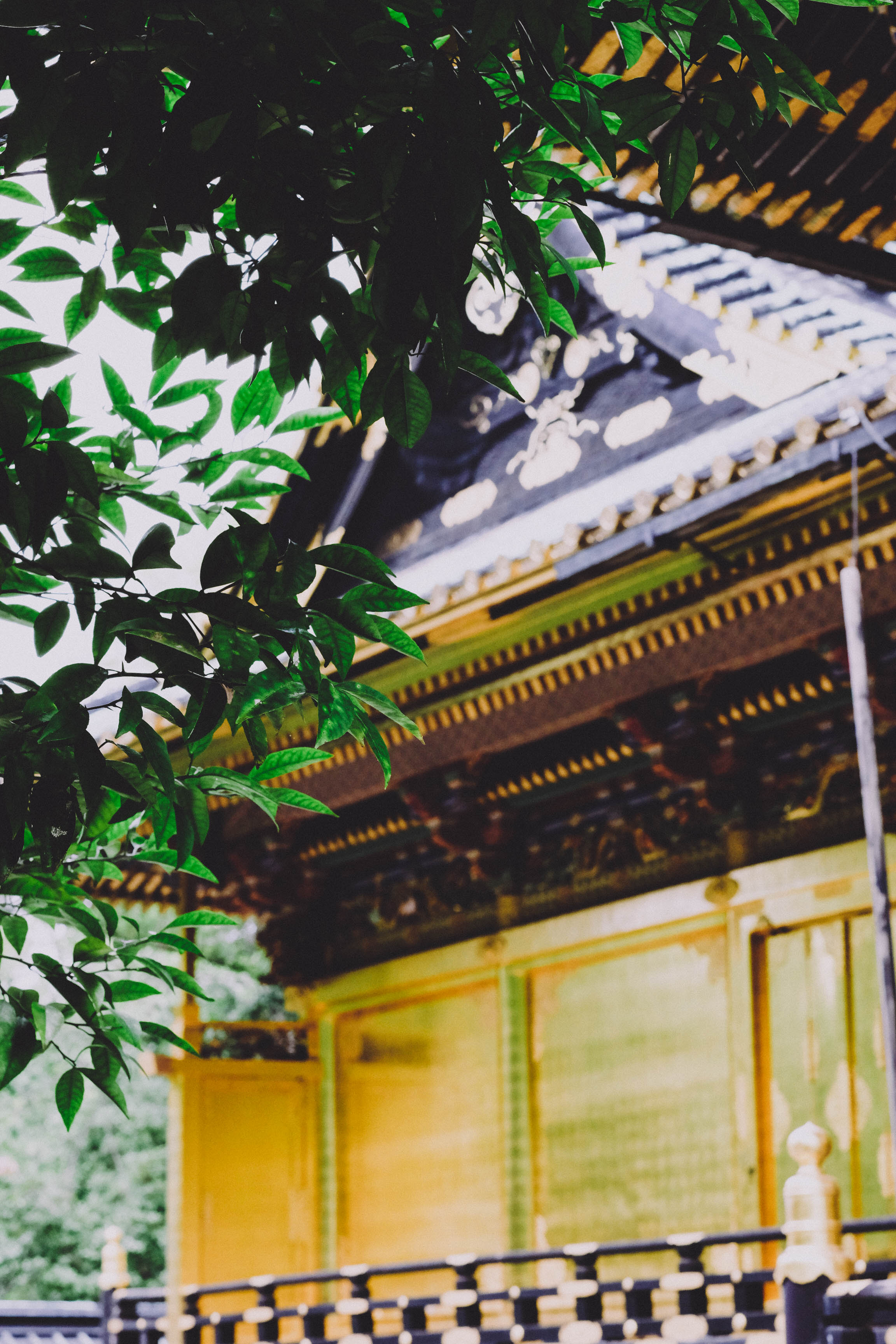 8.26.19_tokyo-5.jpg