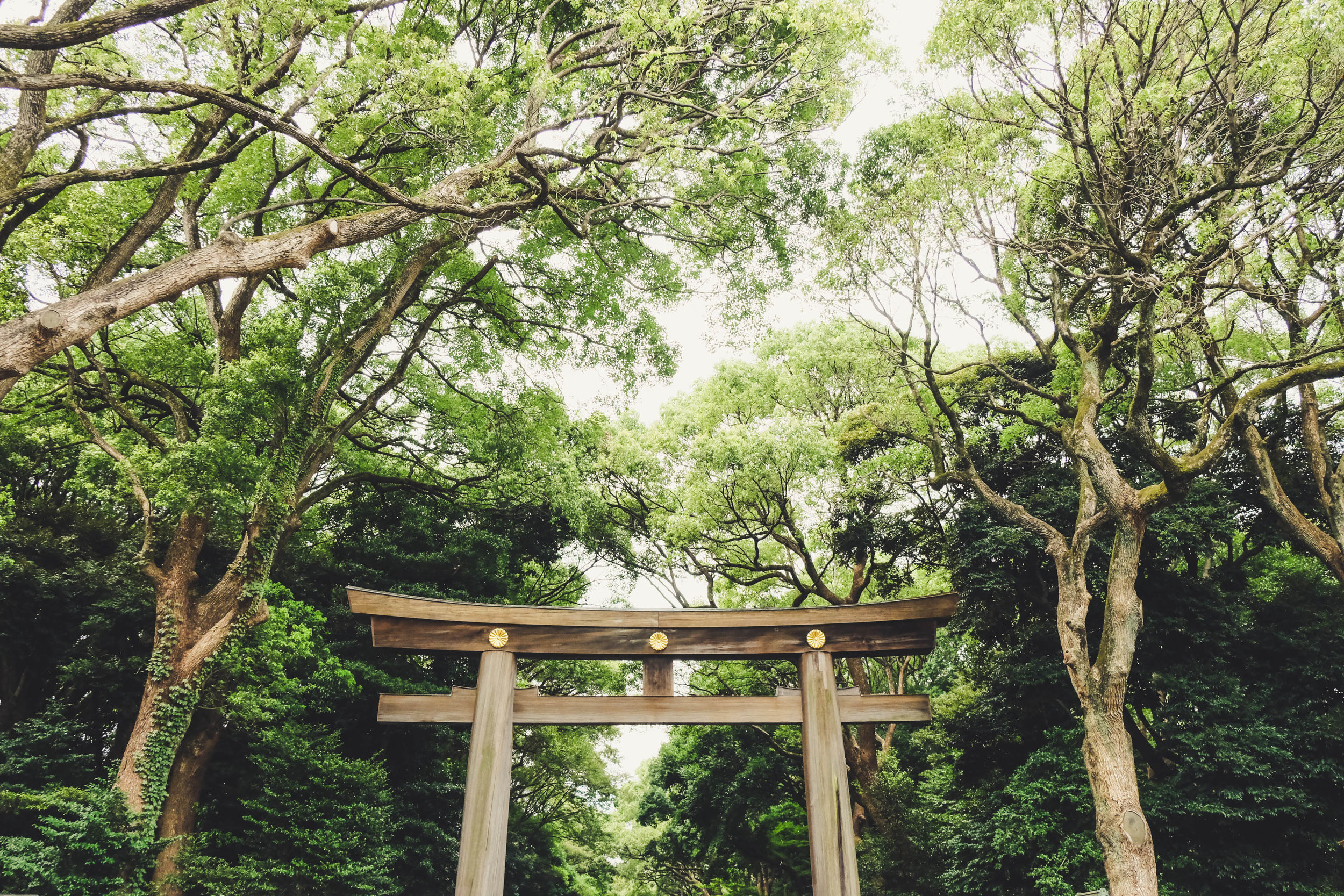 8.27.19_tokyo-2.jpg