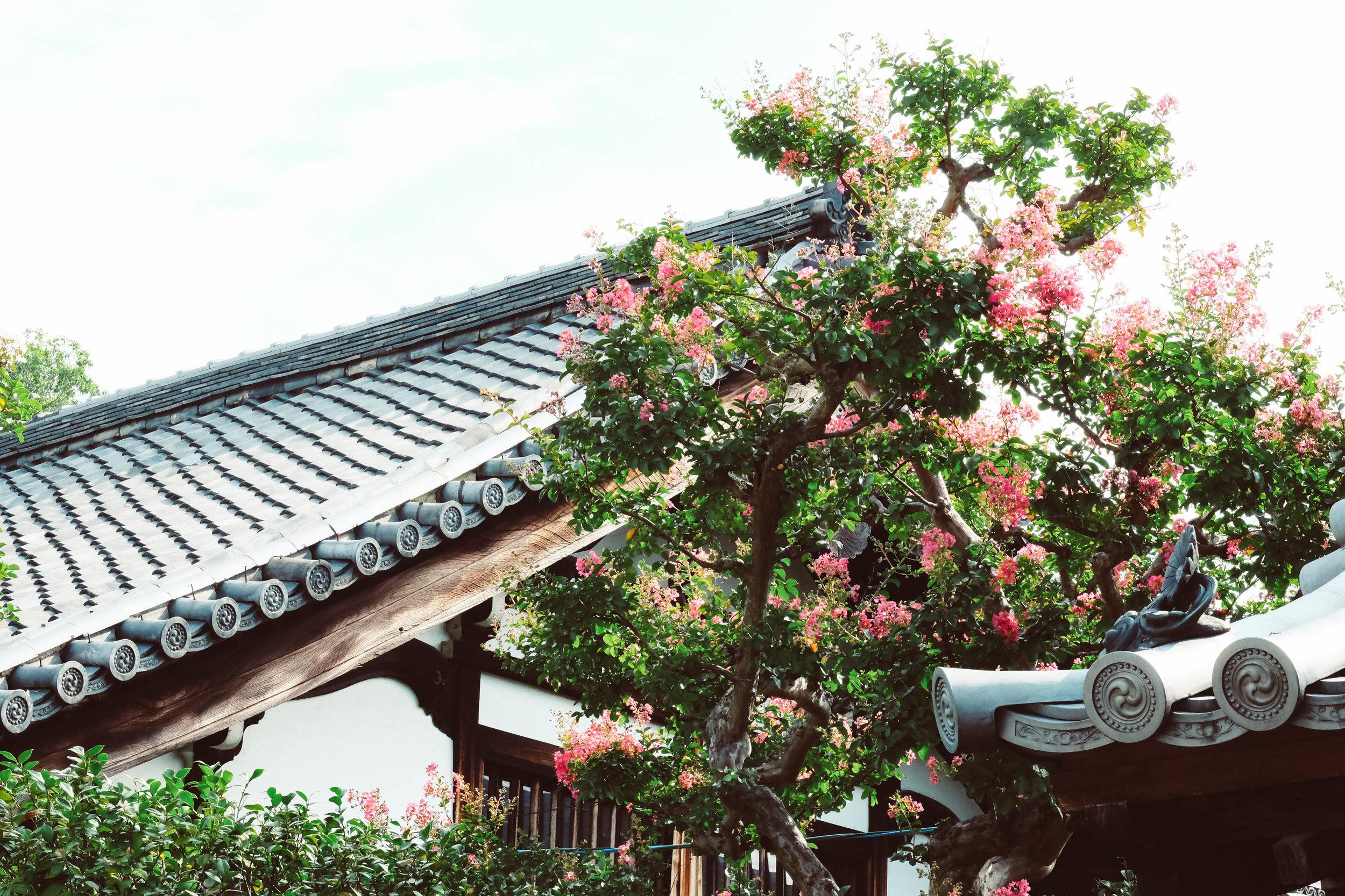 8.31.19_kyoto-10.jpg