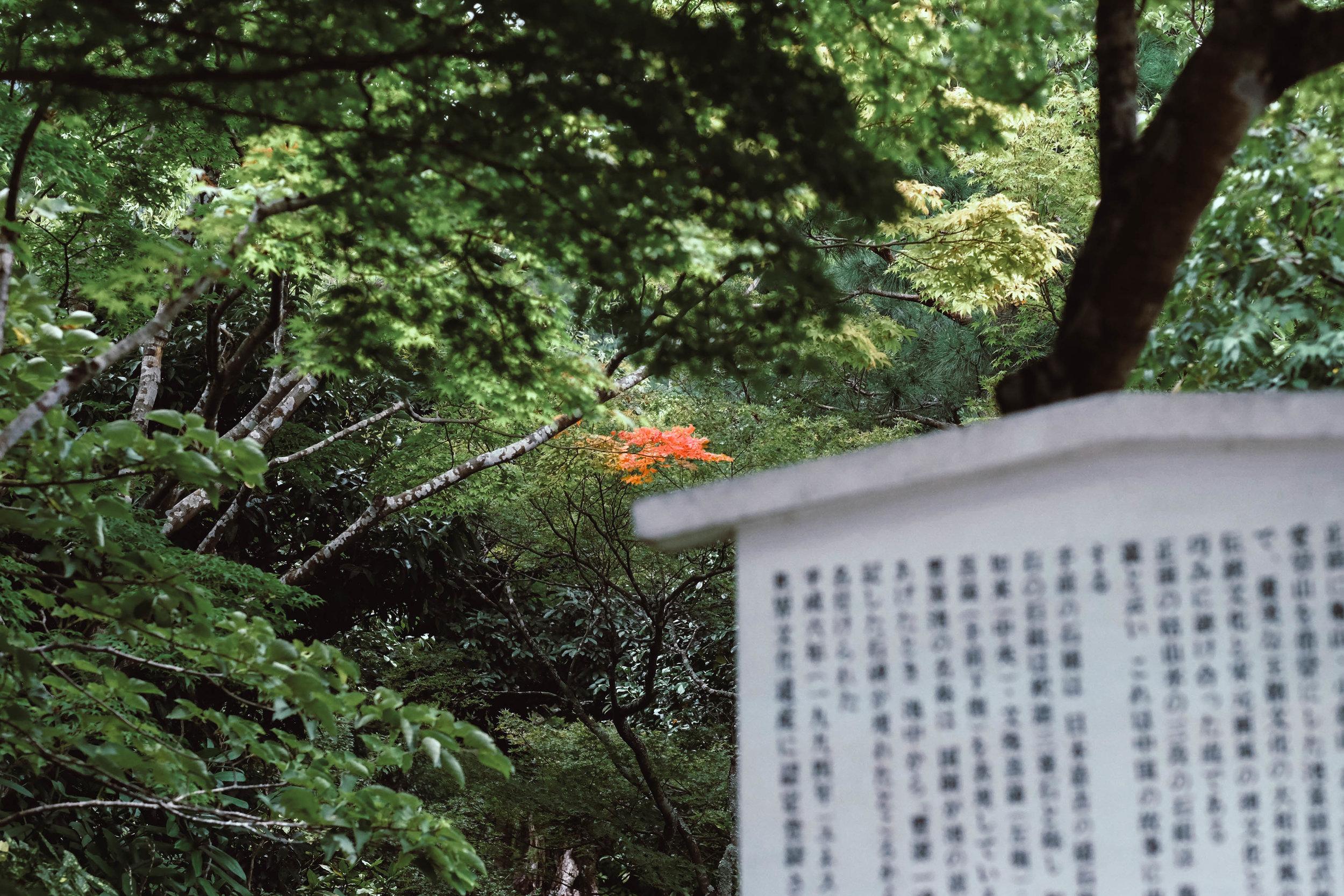 8.31.19_kyoto-89.jpg
