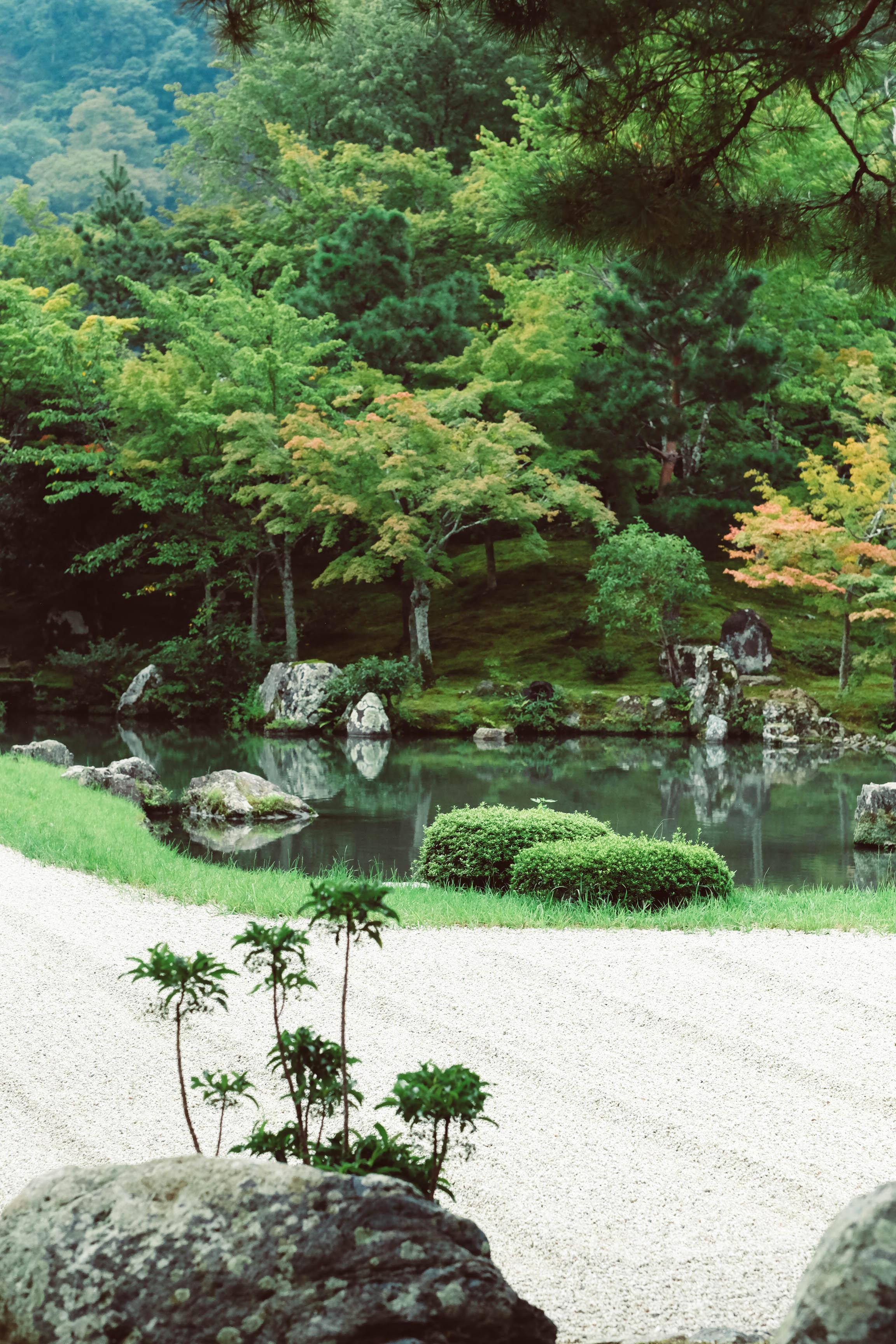 8.31.19_kyoto-86.jpg