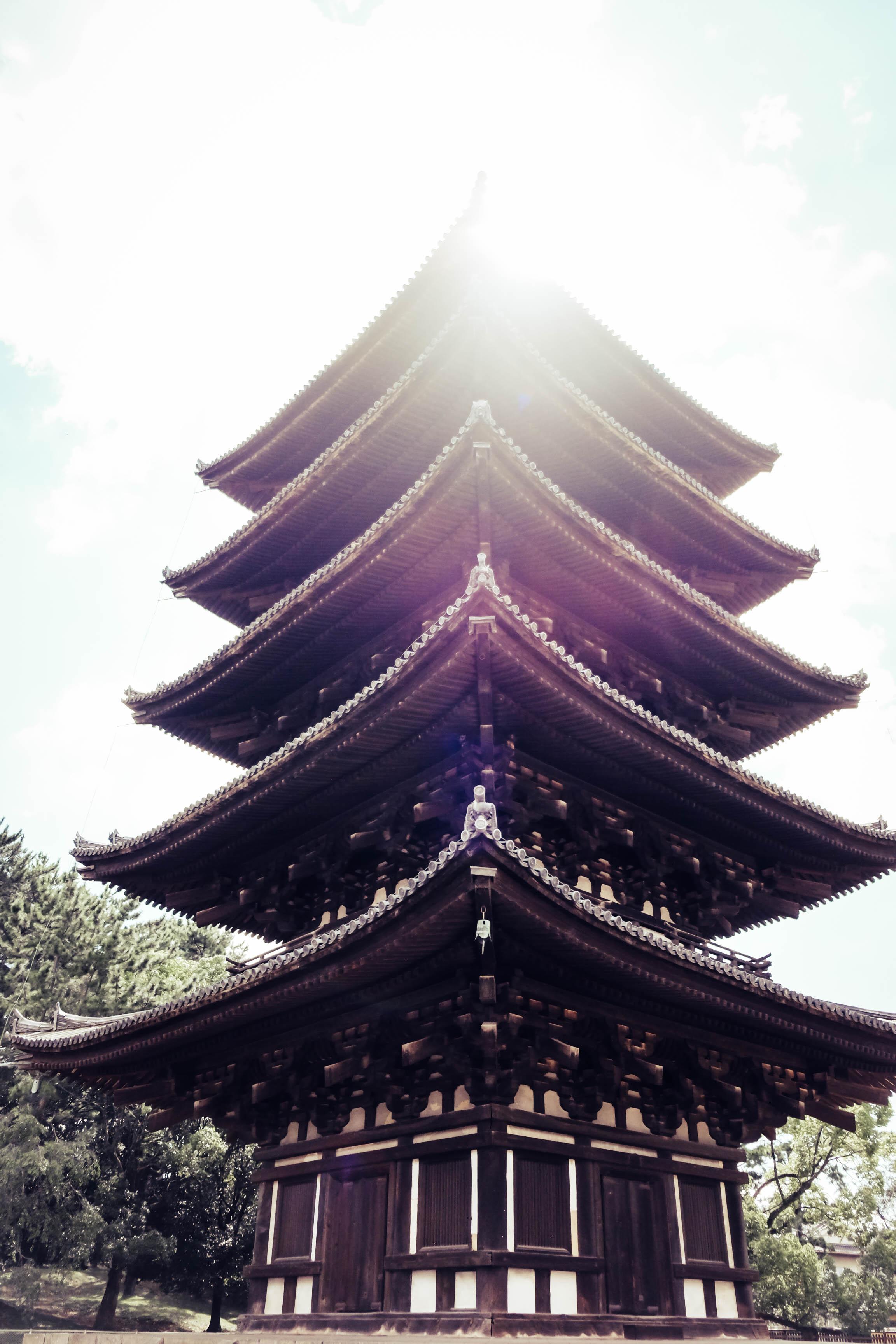 9.3.19_kyoto-31.jpg